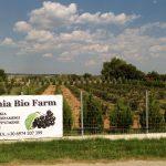 Aronia Bio Farm